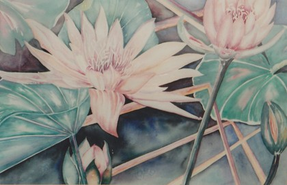 Water Lilies In Realism