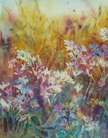 Wild Flowers In Hidden Places